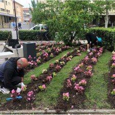 "Volontari a Cervia partecipano all'iniziativa ""Cervia Città giardino"""